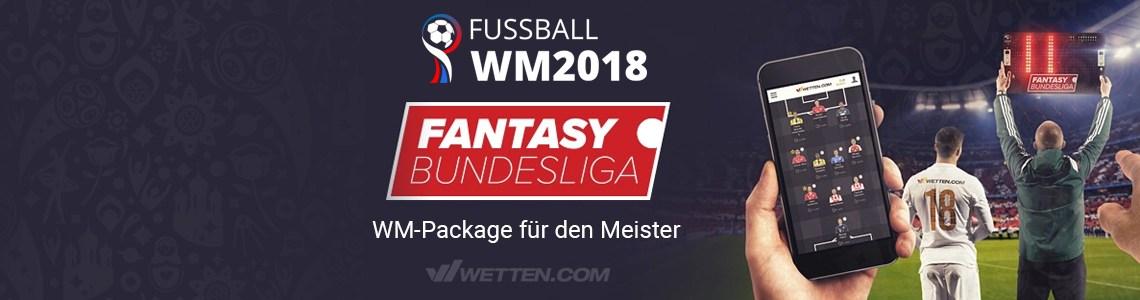Spielsysteme Bundesliga -433001