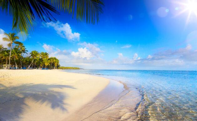 Tracking Spielotheken Jamaika -225248