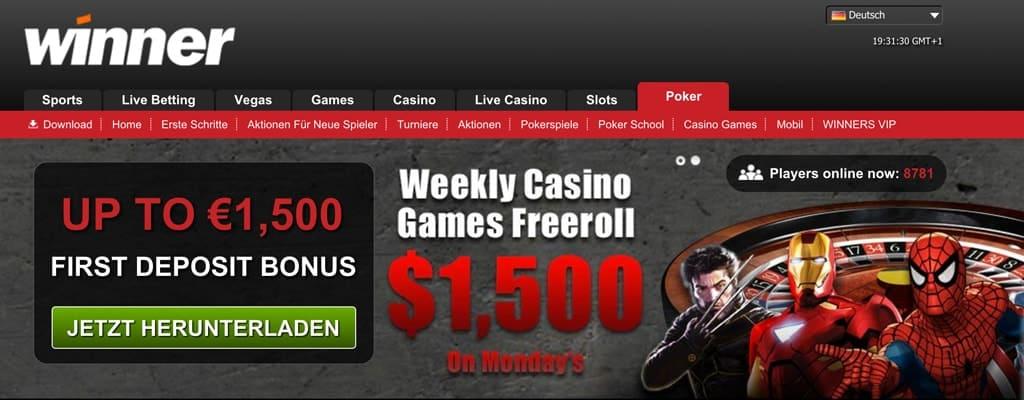 poker spieler verdienst